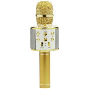 Mikrofon karaoke Mikrofon