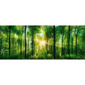 Obraz skleněný Green sunshine