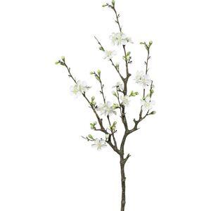 Větvička Dekorační Větvička kdoule Cherry