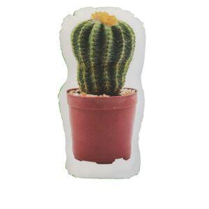 Zarážka Dveřní kaktus